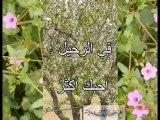 skhira, darwich في الرحيل الكبير - محمود درويش