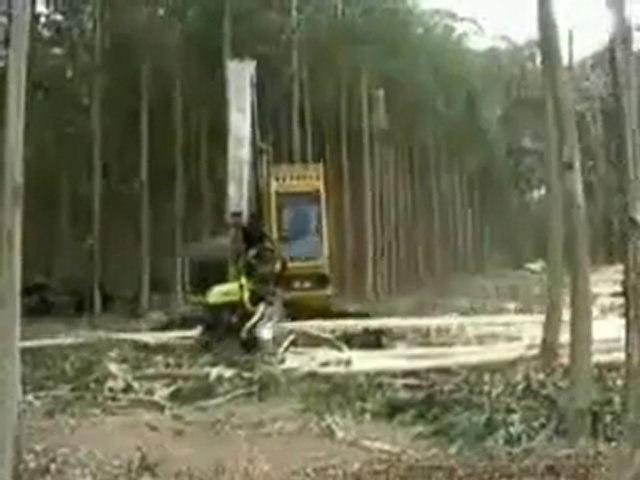 Machine infernale pour la Déforestation