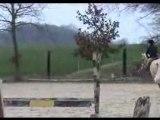 concours d'hunter  du 11/03/12 en club poney 1
