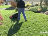 Maintaining the Lawn Mower