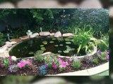 Pond cleaning perth, Perth pond cleaning, Pond maintenance perth, Pond cleaner perth, Aquarium cleaning perth