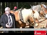 André Mugnier explique pourquoi la ville d'Annecy a choisi le débardage à cheval du bois