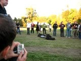 Free-style Phone Throwing