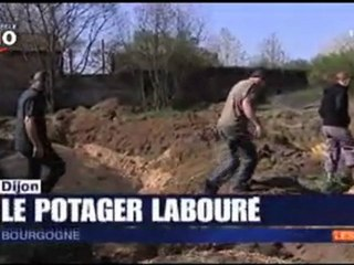 Saccage au jardin collectif des Lentillères