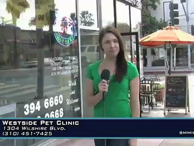 Westside Pet Clinic - Santa Monica Pet Hospital