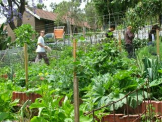 RESTER LIBRE 10 - Permaculture