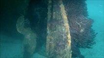 Plongée sur épave :  L'Arroyo   Mars 2012