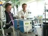 Les algues pourraient devenir notre prochain biocarburant