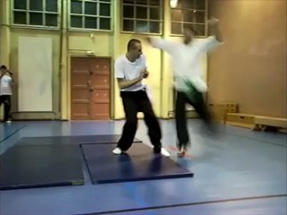 Kung fu project H264