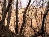 İlkbahar Yaz Sonbahar Kış … ve İlkbahar 6 & Film by Kim Ki Duk