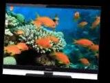 Panasonic VIERA TC-L37E5 37-Inch 1080p  IPS LED-LCD TV Review | Panasonic VIERA TC-L37E5 For Sale