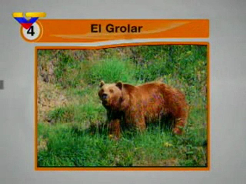 (VIDEO) Los cinco animales híbridos más sorprendentes 17.04.2012