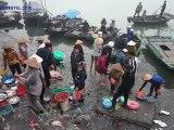 Halong brumeux-Halong - Voyage au Vietnam, Trekking au Vietnam, Voyage de photo au Vietnam, séjours au Vietnam, hors des sentiers battus au Vietnam,Voyage sur mesure au Vietnam