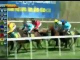2012.04.22, nº 105 LZ (Loterias Estado (Potrancas 3a) Sportside
