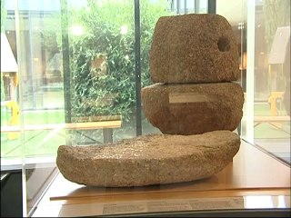 L'oppidum gaulois de Moulay