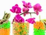 Réalisez une composition florale pour centre de table ou mariage facilement