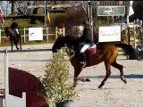 Concours Boulerie Jump club 3 Camille et Rolls de bassière 18/12/11