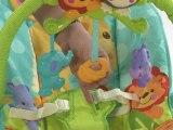 Fisher Price Precious Planet Playtime Bouncer - Kiddicare