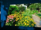 Naturescapes Landscaping Newtown Square