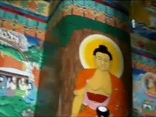 BUDDHA TEMPLE DEHRADOON UTTARAKHAND