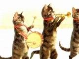 Jungle drums  Sidney Bechet