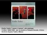 Spazio Tadini video -  Francesco Tadini legge Emilio Tadini, Milano arte
