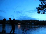 Départ carpe de nuit beau rush KIKI TEAM CARPISTE carp run fishing