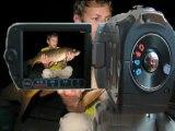 Départ carpe Loveboat bébé silure Présentation KIKI TEAM CARPISTE carp run Seine Catfish