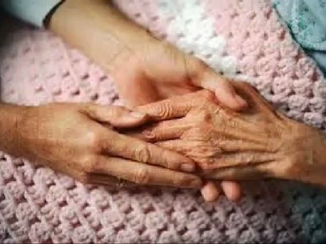 nursing homes – nursing homes for seniors