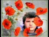 """.DANIEL BALAVOINE """"même sans tes fleurs 1973  MONTAGE photo  Daniel. Michel Berger. Balavoine facebook"""