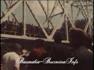 Podul de Flori - Basarabia-Bucovina.Info