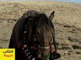 DownHa.Com | مسلسل بيارق العربا الحلقة 14 | منتديات دونها