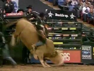 Ryan McConnel - Professional Bull Rider