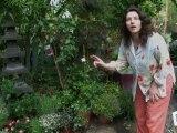 Déco Brico Jardinage : Entretien naturel du jardin avec la biodiversité