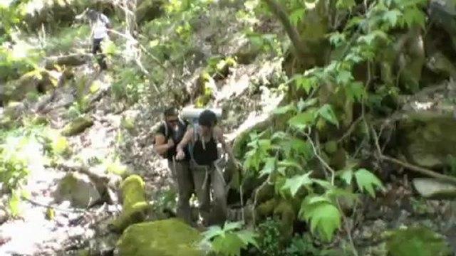 Sardes Kanyon yeşil vadi