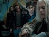 Harry Potter And The Deathly Hallows: Part 1 - Clip - The Deathly Hallows