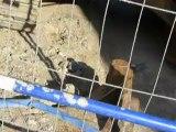 Scandale Ecologique - Chantier Bati-Nantes - L'eau propre pompée est reversée dans les égouts