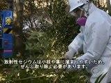 【日本語字幕付】南相馬市の除染風景(米CBS)/This Is How Decontamination Is Done in Fukushima (CBS) (Jan. 16, 2012)