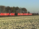 Züge Brühl-Walberberg, LTE 185, MWB 182, 425, 101, 146, DBAG 185, Railion 185, 152, 460, RAN 185, ICE II, 140, 152