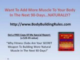Workout Routines  - muscle building workouts 05-04