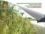 Leccenews24 notizie dal Salento in tempo reale: Tg 22 Maggio