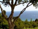 Villa A Vendre Vue Mer Panoramique Saint Tropez 83