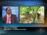 AFRICA NEWS ROOM du 21/05/12 - Côte d'ivoire - Agriculture le secteur du cacao - partie 2