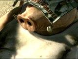 Beyond Good And Evil 2 - Teaser [HD]