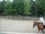 Moi sur le cheval alezan qui s'appelle Félix et la voix de ma mère