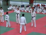 demo taekwondo Printemps des arts martiaux