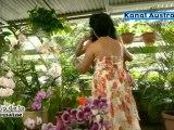 MEDERICE - Monmon (île de la Réunion) : Clip de la semaine sur Kanal Austral