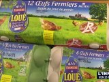 Les fermiers de Loué à la conquête des jeunes!