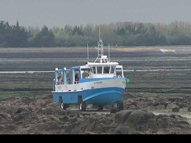 L'île Tatihou en Normandie : balade, randonnée, musée maritime, oiseaux, conservatoire littoral