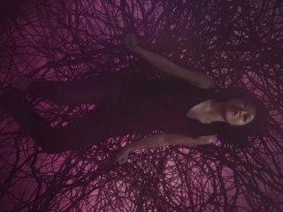 LA PENDULE (clip officiel INA-ICH)